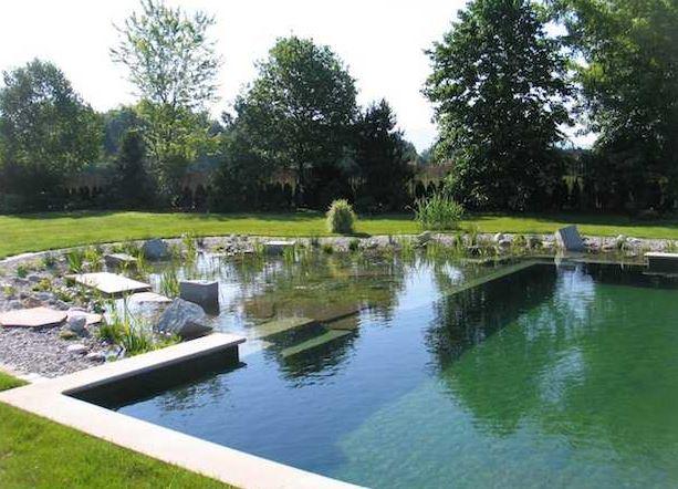 esempio di bio piscina
